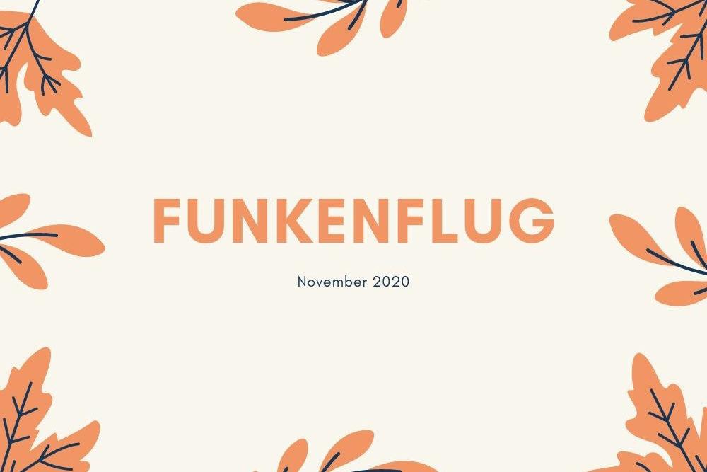 Symbolbild für den Monat November, mit orangenen Blättern